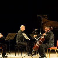 Strakonice, dům kultury, 25.10.2016, Pražské komorní trio